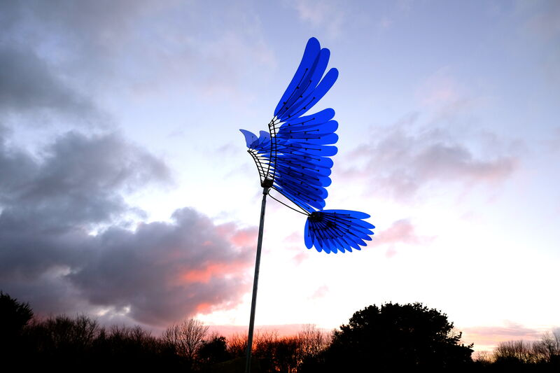 blue wings currently at Tremenheere sculpture gardens