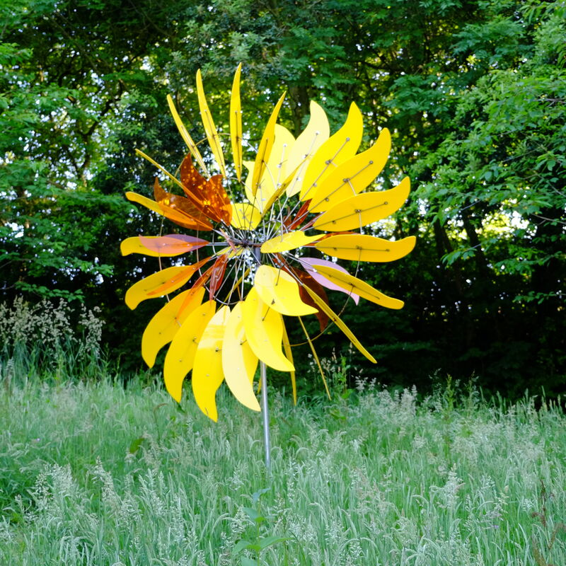 yellow sunflower with orange centre