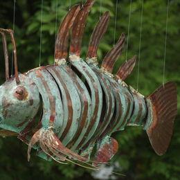 Small scorpion fish
