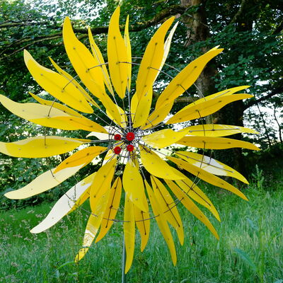 yellow sunflower with yellow centre