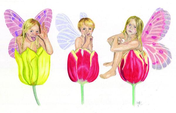 Rude Fairies