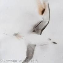 Smoke Bird (1)