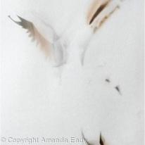 Smoke Bird (2)