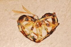 Glass Heart Majorca