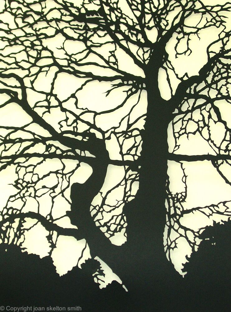 Cliveden Tree