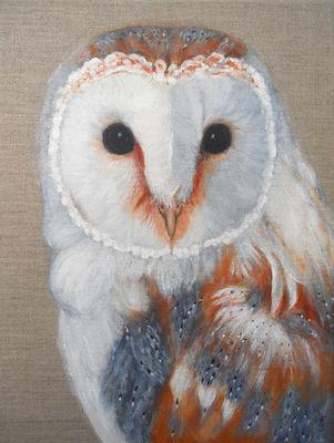 Barn Owl Acrylic On Canvass