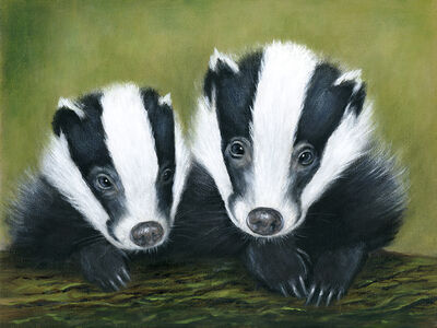 Previous image Next image →: www.cathystringer.com/badgers/452248_badger-couple.html