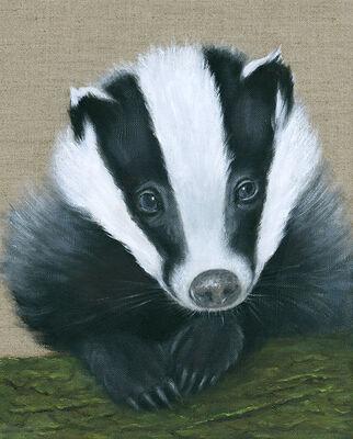 Badger Cub - Giclee Print