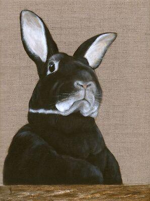 Rabbit - The General
