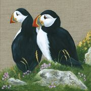 Puffins On Guard