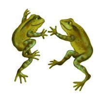Green Frogs Leaping