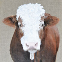 Denzel the bull