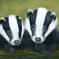 Badger Couple