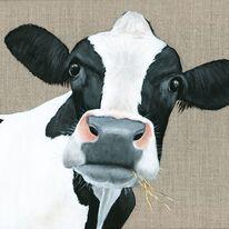 Cow - Bessie