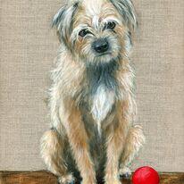 Scruff Mongrel Dog