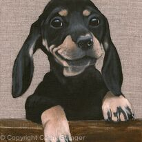 Dog - Smiler