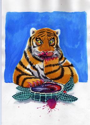 Tiger tasting turtle