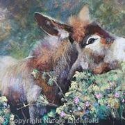 donkey in the brambles