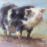 Happy as a Pig in Mud!