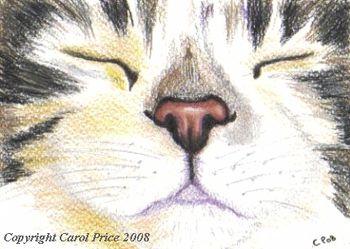 Original OSWOA Cat Nap Painting