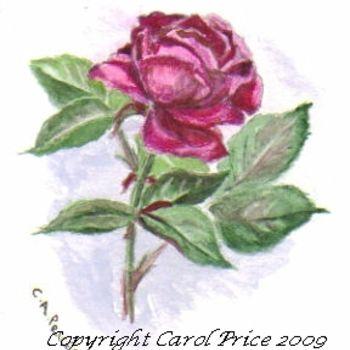 Original OSWOA Carmine rose Painting