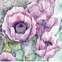 Poppies by Penny Hopkins