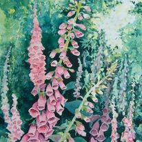 Foxgloves by Krysia Drury