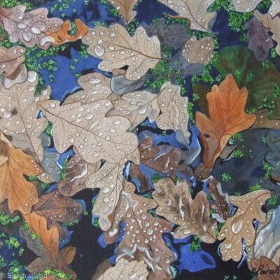 'Floating Oak Leaves', Original Watercolour and Gouache Art Work.