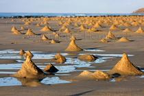 Ghost Crab Mounds at Sunset, Rakhyut, Dhofar, Oman