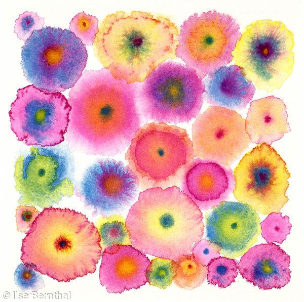 Blooms 2 Pink Ltd Edition