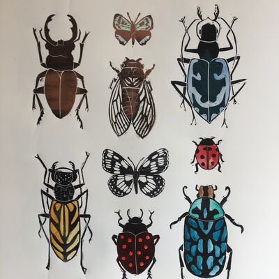 Coleoptera IX