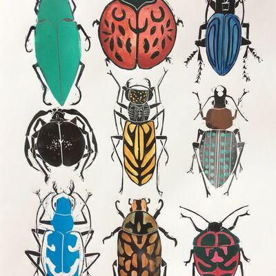 Coleoptera II