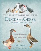 The Illustrated Guide to Ducks and Geese