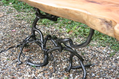 root table detail