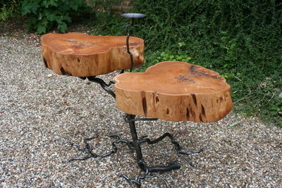 cedar twin root table