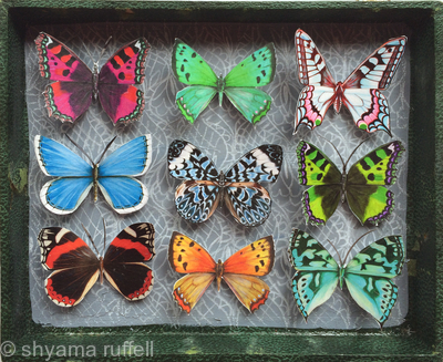 Mauris Papiliones Green x9 #9