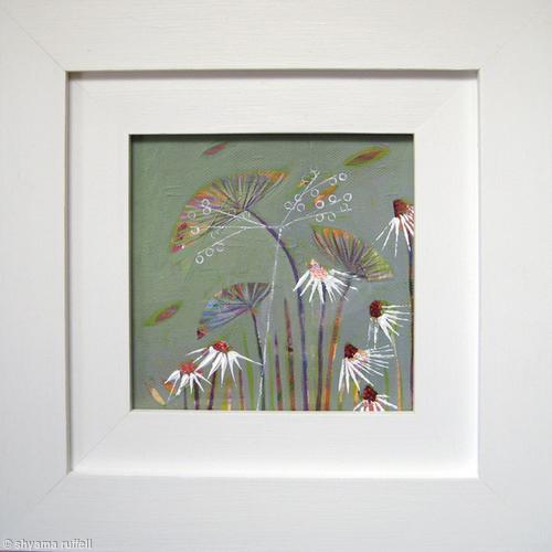 dandy daisy 1