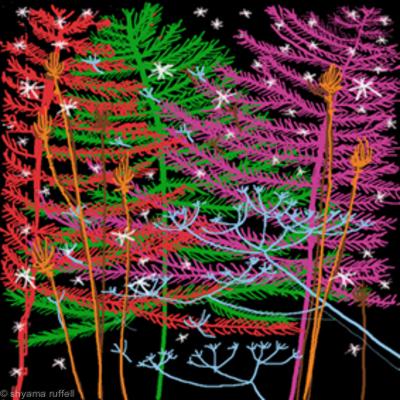 Trees and Stars 21 C