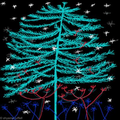 Trees and Stars 22 C