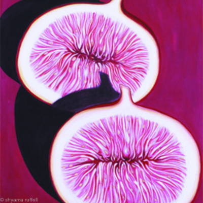 Split Fig