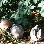Ceramic Horse Chesnuts