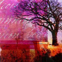 Treescape III