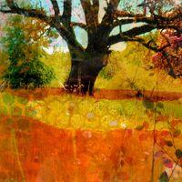 In the Meadow II
