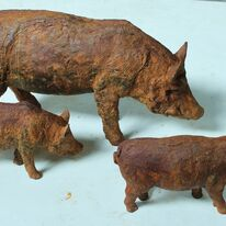 Wild boars by Andrew Brown