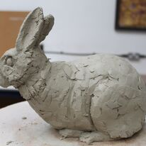 Rabbit by Andrew Brown