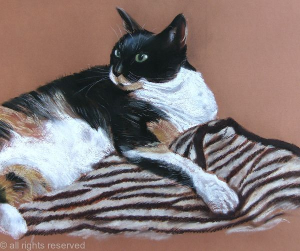 Tortie on tiger rug SOLD