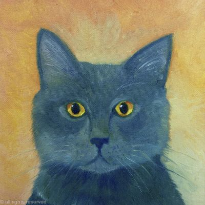 Russian Blue SOLD