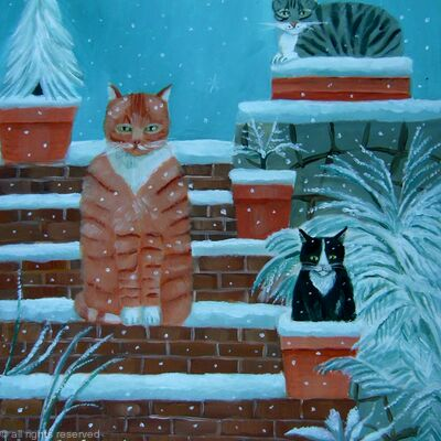 Cats in snow