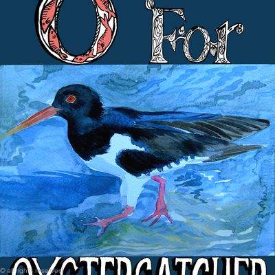 O for oystercatcher
