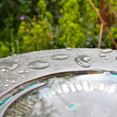 Detail of bird font commission.  Photo courtesy of Toby Leetham, 2010